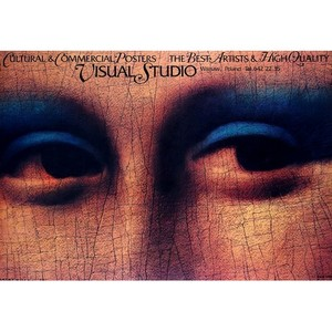 Visual Studio, Polish Poster