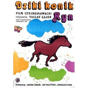 Dziki konik Ryn, Polish...