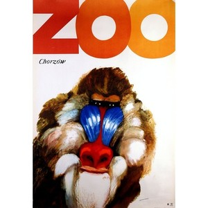 ZOO - Monkey, Polish Poster