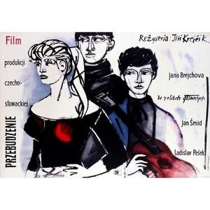 Awakening, Polish Movie Poster