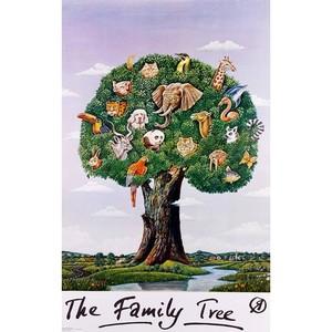The Family Tree,  polski...