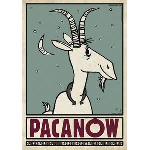 Pacanow, Polish Promotion...