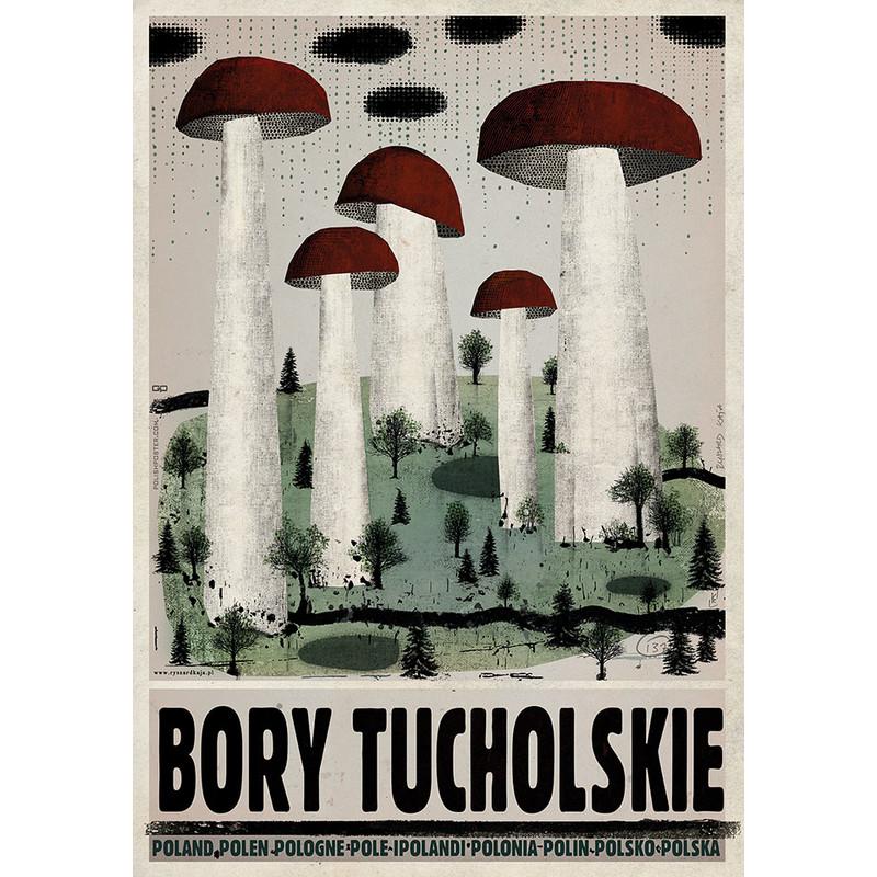 Bory Tucholskie Plakat Z Serii Polska R Kaja